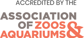 association of zoo