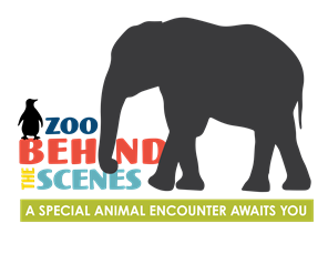 Tours Guided Programs Little Rock Zoo